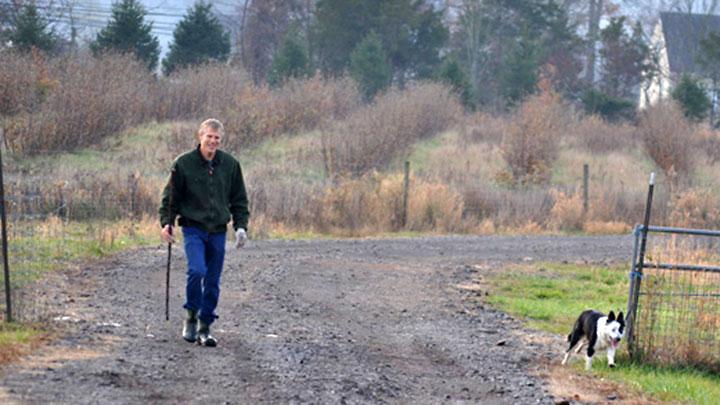 Blue Herding the Sheep – a Progress Report