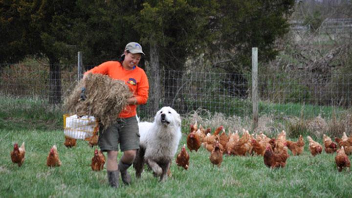 Double Brook Farm