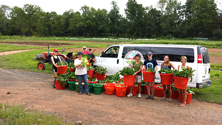 Volunteer Day With Rolling Harvest