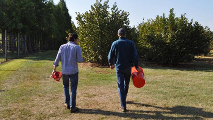 Hazelnut Harvest at Rutgers - Double Brook Farm
